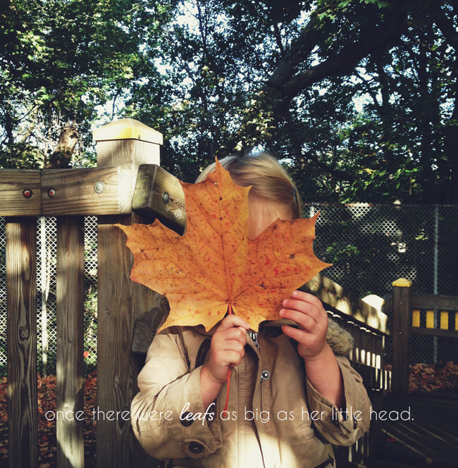fall in canada, giant leafs, kids style, little style, rememebr moments forever