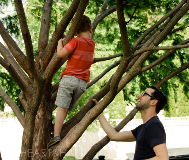 family life, toronto young family, stylish family, family park dates, boys climbing trees