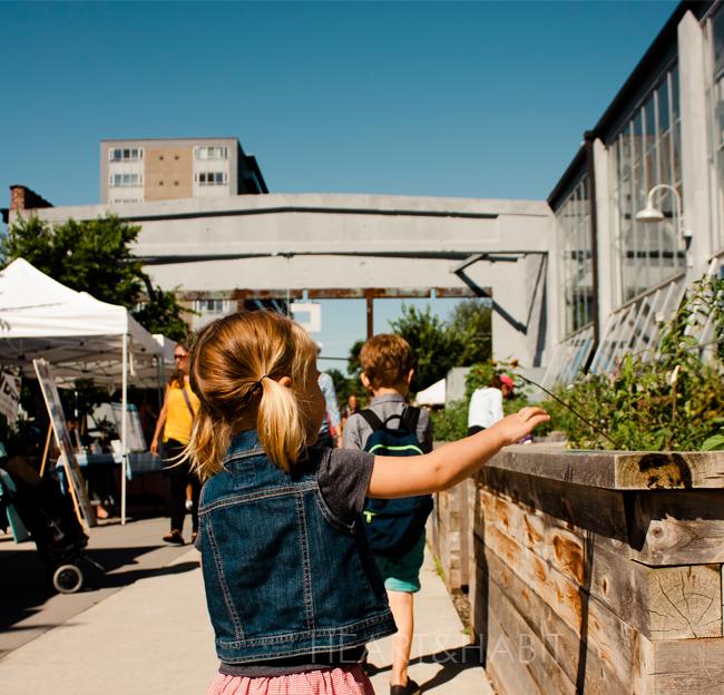 wychwood barns farmers market, family farmers market trip, young urban family, family style, farmers market loot, support local, toronto family